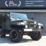 1988 Jeep Wrangler 4.2 ^^ VENDUTA ^^